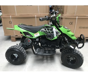 Mini ATV Raptor Electrics