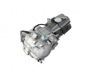 Engine Daytona Anima 190cc 4V
